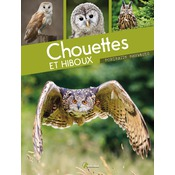 Chouettes & Hiboux, Collection Portraits sauvages