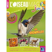 L'Oiseau Magazine Junior n°14