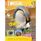 L'Oiseau Magazine Junior n°16