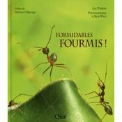 Formidables fourmis