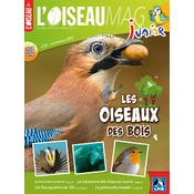 L'Oiseau Magazine Junior n°26