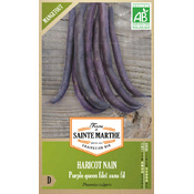 Graines Bio Haricot Nain Purple Queen