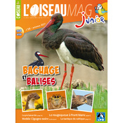 L'Oiseau Magazine Junior n°28
