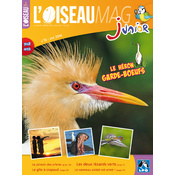 L'Oiseau Magazine Junior n°15