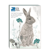 Coffret 12 cartes postales doubles Faune Anne Mortimer