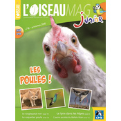 L'Oiseau Magazine Junior n°18