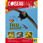 L'Oiseau Magazine Junior n°34
