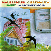 CD Attirer le martinet noir