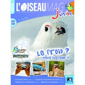 L'Oiseau Magazine Junior N°1
