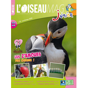 L'Oiseau Magazine Junior N°6