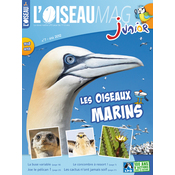L'Oiseau Magazine Junior N°7