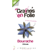Graines Bio Bourrache officinale