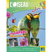 L'Oiseau Magazine Junior n°11