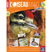 L'Oiseau Magazine Junior n°13