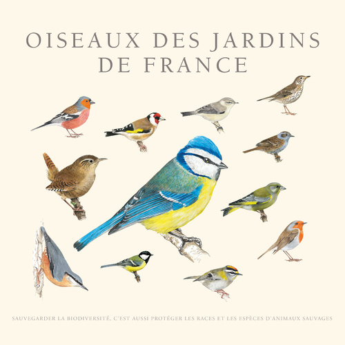 calendrier 2018 oiseaux des jardins de france. Black Bedroom Furniture Sets. Home Design Ideas