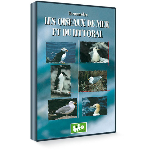 dvd reconna tre les oiseaux de mer dvd oiseaux boutique lpo ensemble pr servons la nature. Black Bedroom Furniture Sets. Home Design Ideas